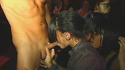 Dancing Bear rubbing cock all over clothed females